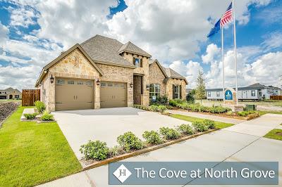 The Cove.jpg