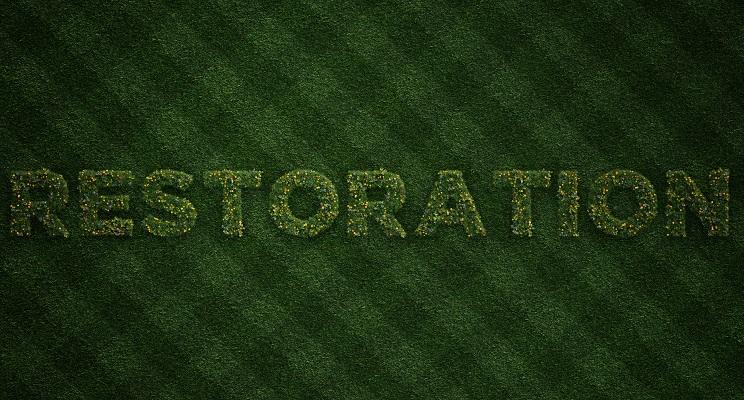 Lawn Restoration Tips